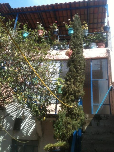 Long Term Apartment Rentals In San Miguel De Allende Mexico
